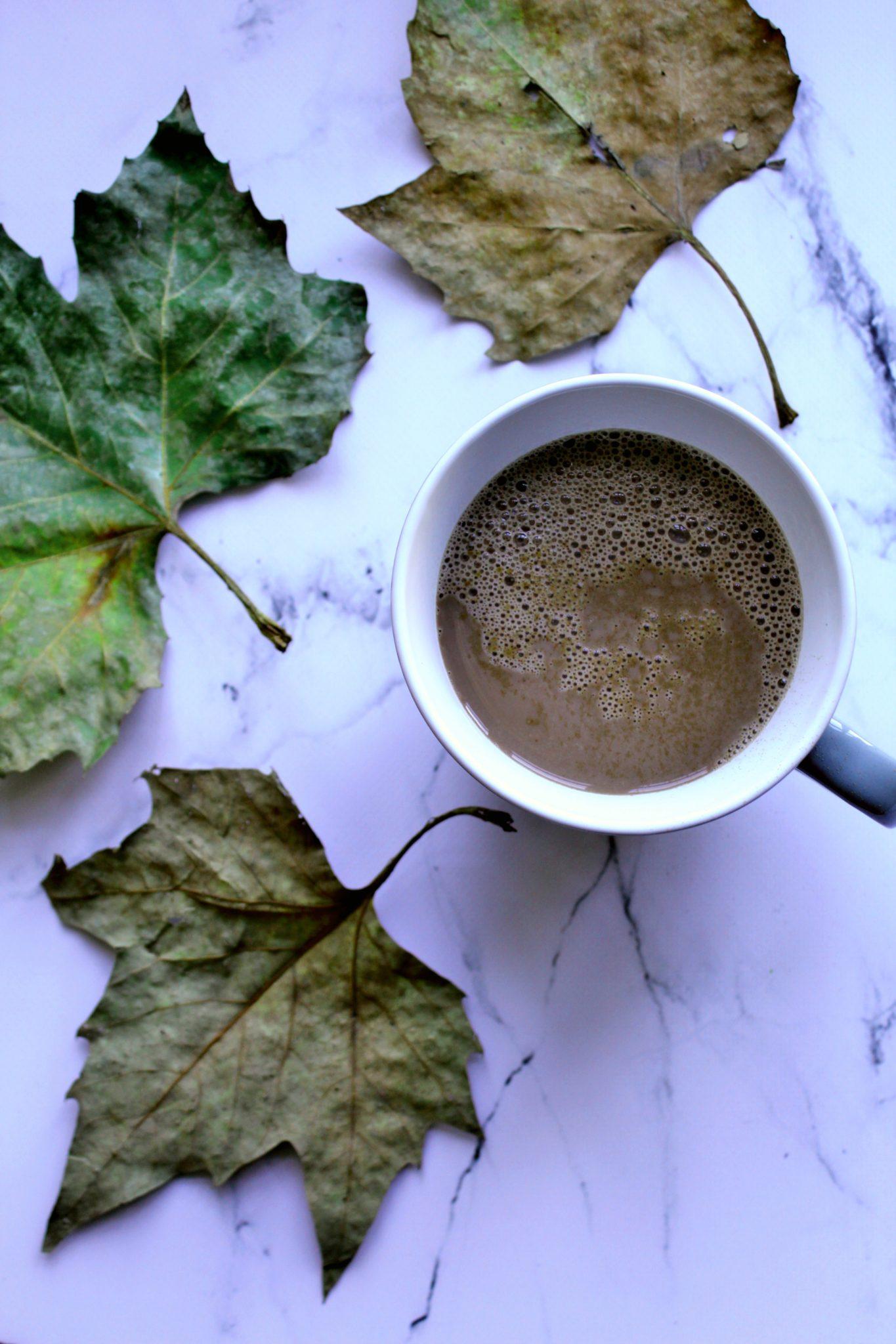 Simpel vegansk kakao