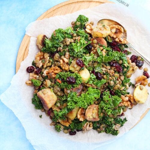 lun linsesalat med grønkål og kartofler