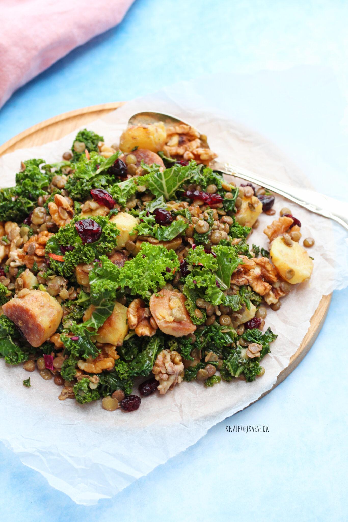 Lun linsesalat med stegte kartofler og grønkål